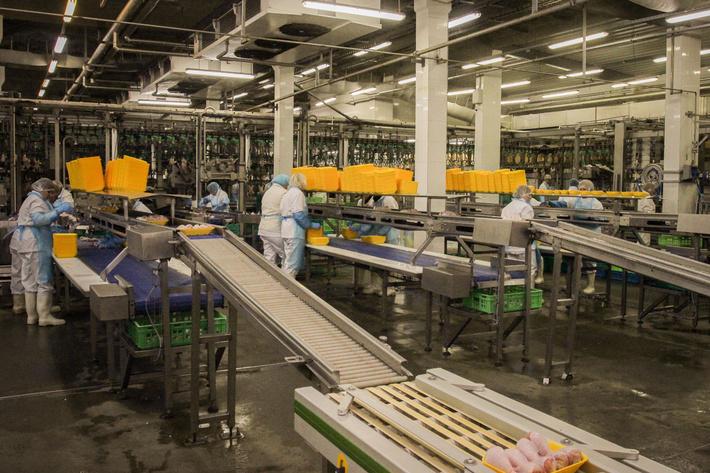 Группа «Черкизово» будет экспортировать свою продукцию вЕвропу